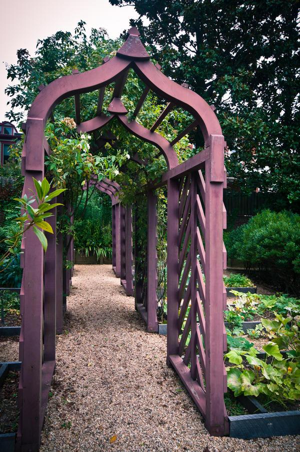 Группа деревянных арок на огороде
