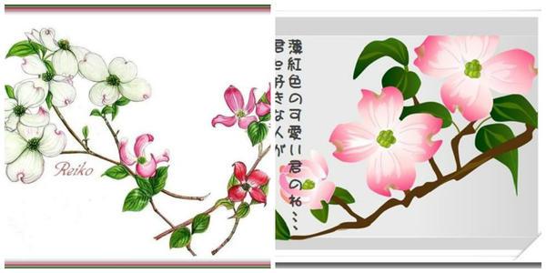 Изображение кизила Коуза на гравюрах. Фото с сайта blog.goo.ne.jp