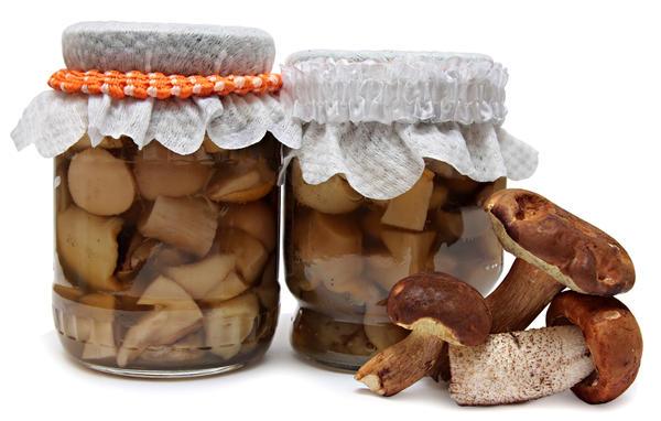Горячая засолка грибов