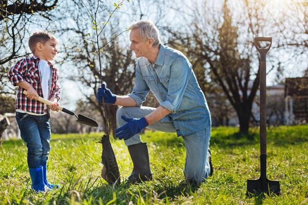 Секреты старого садовода