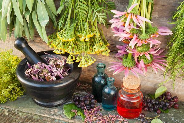 Ягоды аронии - кладезь витаминов и полезных веществ
