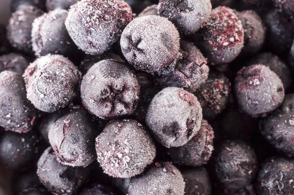 Ягоды черноплодной рябины можно заморозить