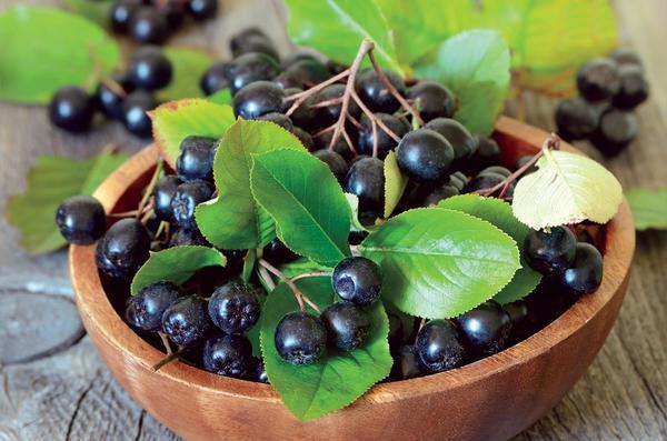 Из черноплодной рябины можно сделать множество полезных заготовок. Фото с сайта i0.wp.com