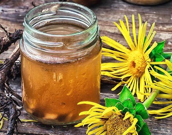 Чай из сушеных корней девясила, фото с сайта herbalpedia.ru