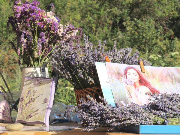 Лаванда узколистная — любимица сайта и помощница женской красоты, фото автора