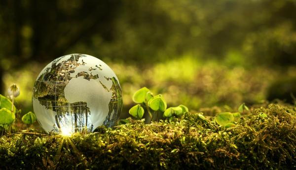 Люди должны перейти на экологически безопасное хозяйствование на земле