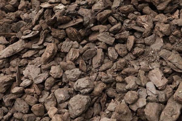 Бурый уголь, фото с сайта user.vse42.ru