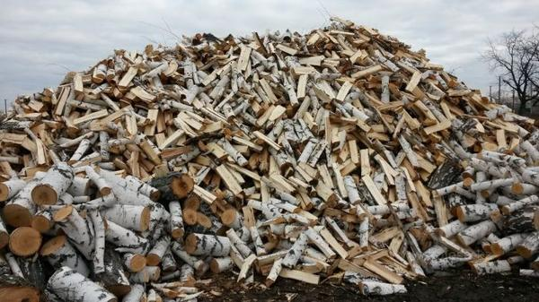 Чтобы березовой золой удобрять почву, потребуется уничтожить все березовые леса, фото с сайта izhevsk.doski.ru