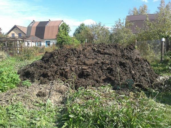 Навозная куча займет немало огородной площади, фото с сайта ogorod.ru