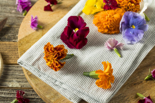 Цветки для кулинарии