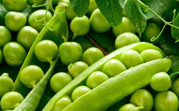Для любителей гороха зимующие сорта - находка. Фото с сайта applestozinc.co.uk