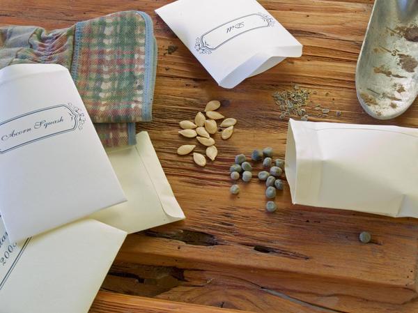 Семена в ярких-цветных и в белых пакетах абсолютно идентичны по качеству