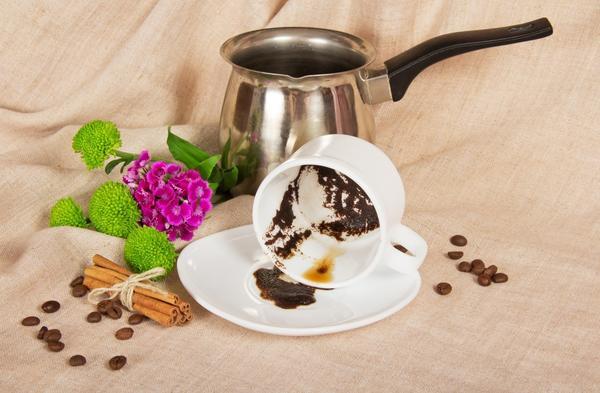 Спитой кофе - замечательное натуральное удобрение