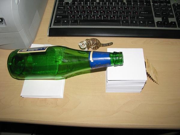 Бутылка-ловушка