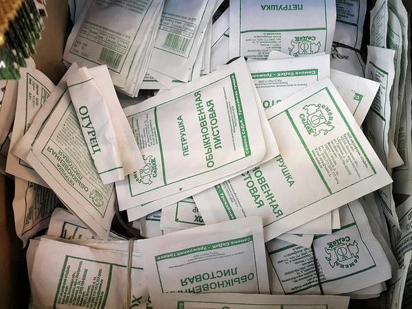 Семена в белых пакетах ничуть не хуже. Фото с сайта img-fotki.yandex.ru