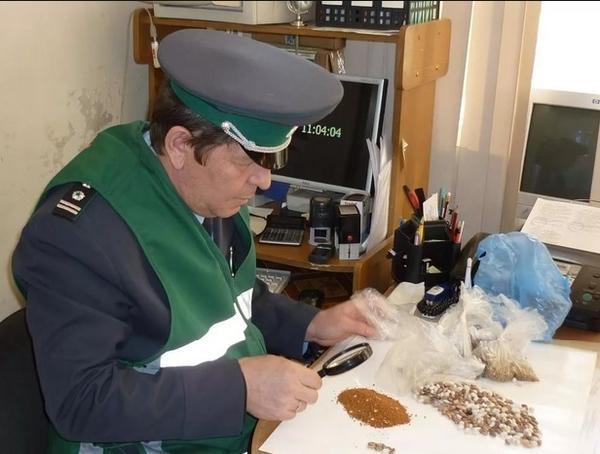 Фитосанитарный контроль на таможенной границе. Фото с сайта ozonline.ru