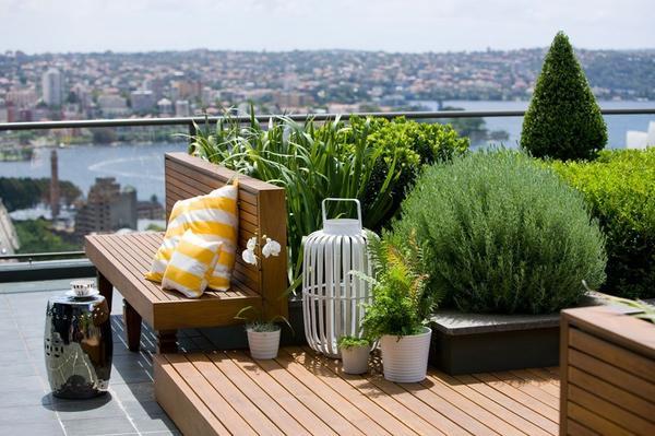 Интенсивный сад на крыше. Фото с сайта datestudio.by