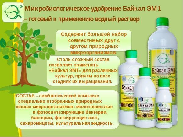 Достоинства препарата. Фото с сайта nashaucheba.ru