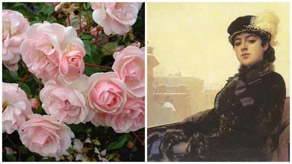 Полиантовая роза сорт 'Mevrouw Nathalie Nypels', фото с сайта Perryhill Nurseries и «Незнакомка» Ивана Крамского, фото с сайта kulturologia.ru