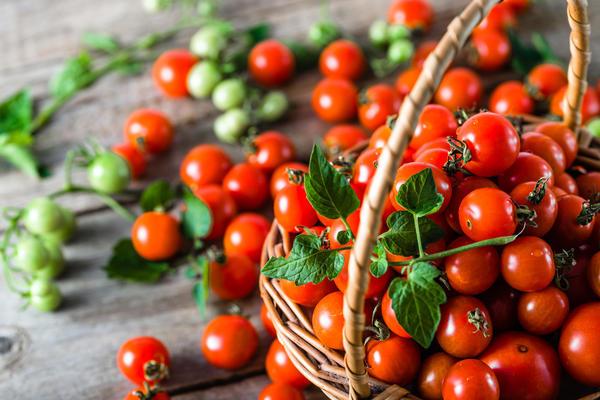 Лучшие сорта и гибриды томатов черри и смородиновых