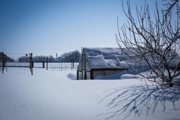Парники и теплицы должны быть надежно защищены от холода