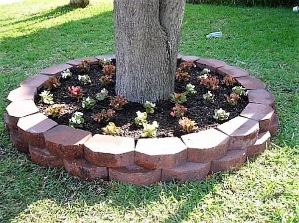 Устройте клумбы в приствольных кругах деревьев