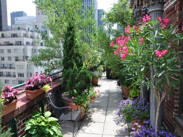 В контейнерах можно выращивать и цветы, и кустарники, и деревья. Фото с сайта nanobuffet.com