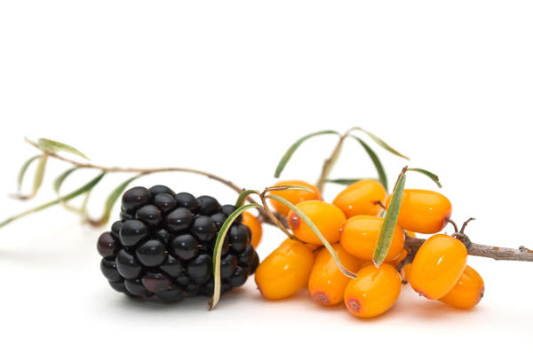 При желании можно добавить к облепиховому соку другой ягодный сок - ежевики, аронии, ирги или черники