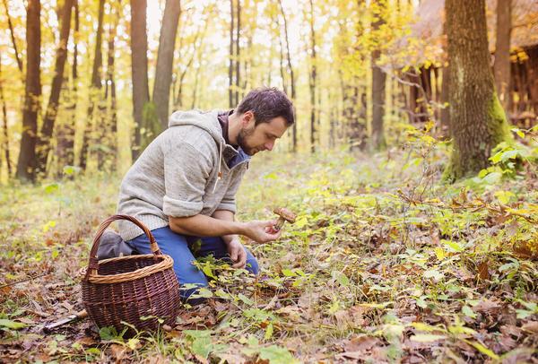 В любом случае решительно выбрасывайте незнакомые грибы