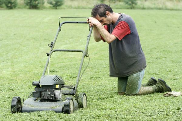 Хороший газон на создание и уход потребует немало времени