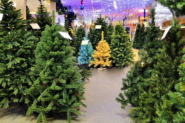 Искусcтвенные елки могут быть довольно реалистичны. Фото с сайта lh3.googleusercontent.com
