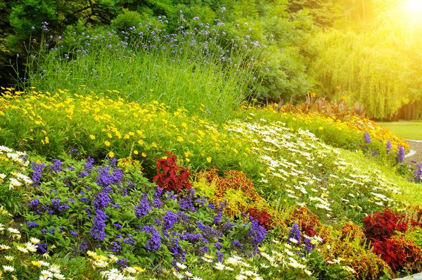 Русский сад - это, прежде всего, непринужденность и естественность
