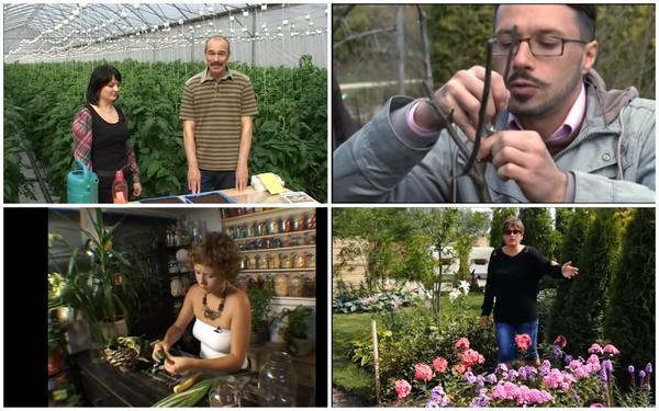 Телеканал Загородная жизнь можно смотреть круглосуточно