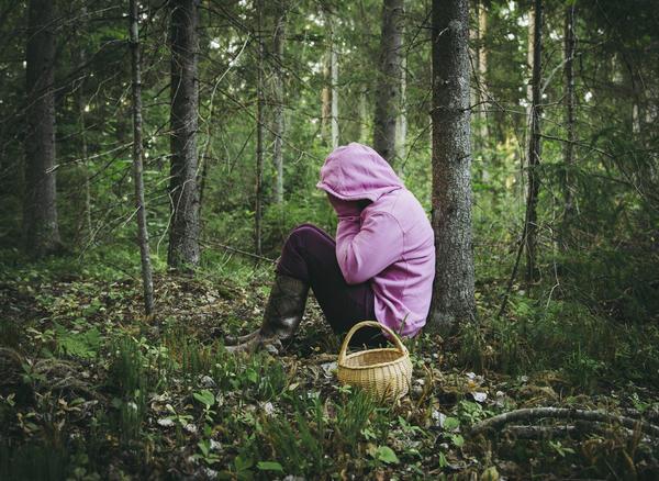 Заблудиться в лесу легко, особенно новичку