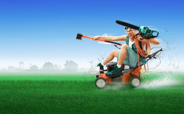 Дачные развлечения не обязательно должны быть связаны с газоном и теплицей
