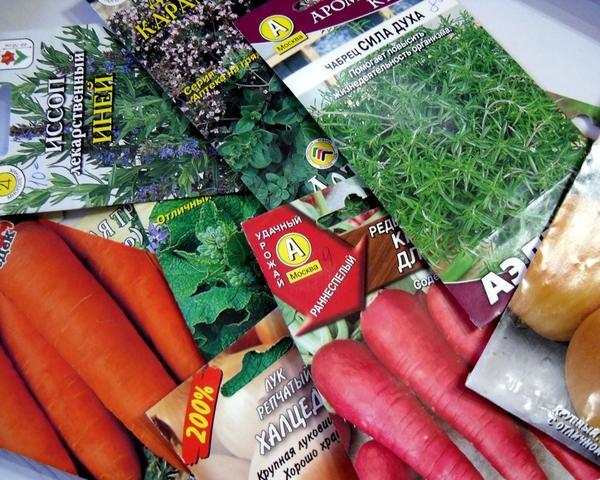Хорошие семена - залог богатого урожая. Фото пользователя MarinaGerasimenko