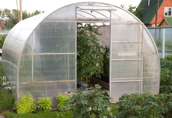 В холодном климате огороднику без теплицы не обойтись!