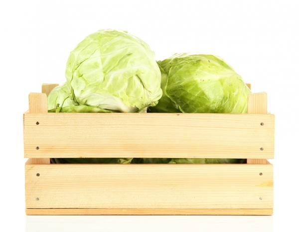 Для зимнего употребления лучше предпочесть капусту среднеспелых, среднепоздних либо позднеспелых сортов