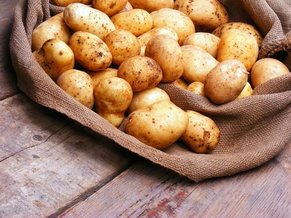 Картофель обычно занимает большую часть погреба