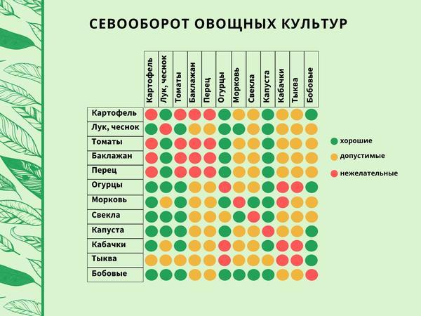 Таблица выбора предшественников овощных культур