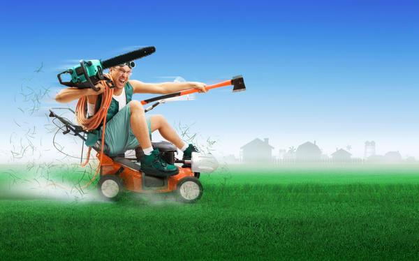 Услуга проката садового инструмента становится все более популярной