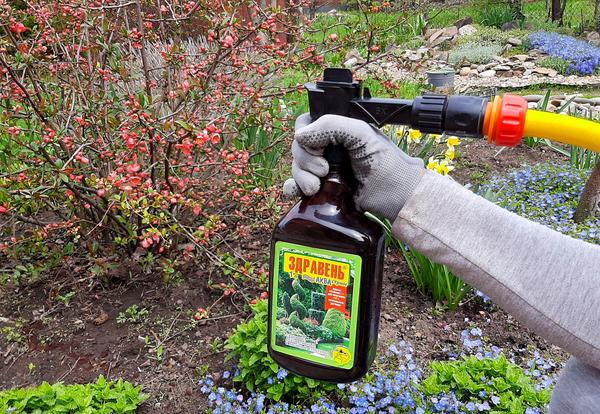 Система АКВАстрим для удобной и быстрой подкормки растений