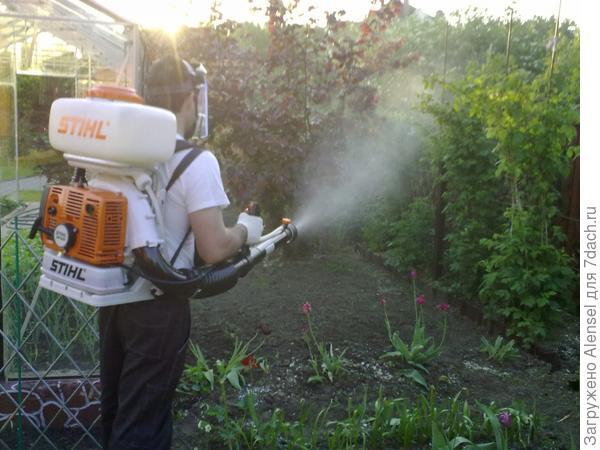 Опрыскивание растений эпином