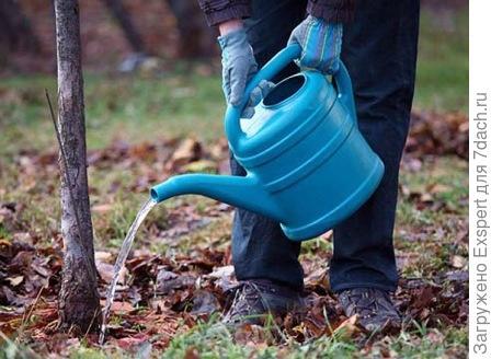 влагозарядковый полив сада