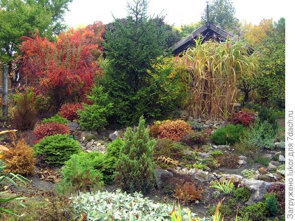 Осень в рокарии