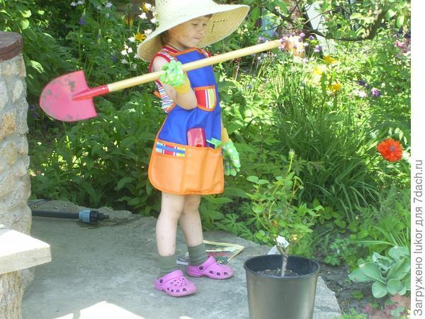 Незнайка-садовник