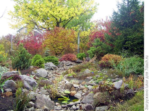 сухой ручей осенью