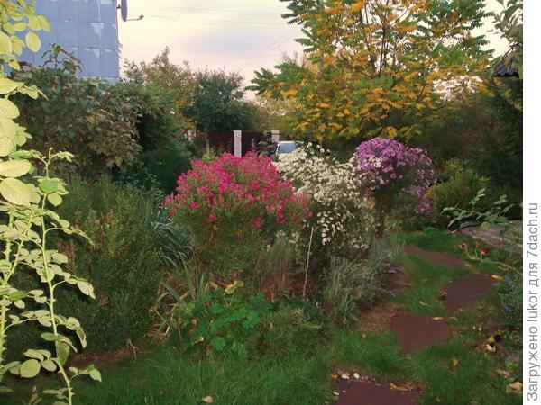 Сентябрь: сезонные работы на дачном участке
