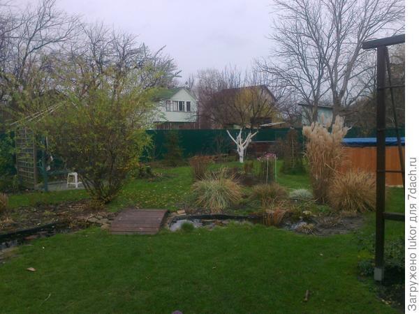 Сад на 6 сотках