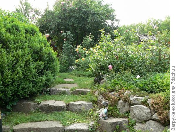 свежий сад